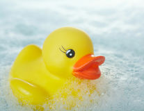 Rubber Duck Royalty Free Stock Photography