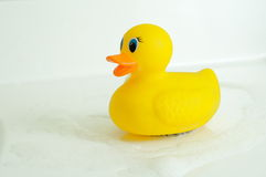 Rubber duck. With water and bubbles swirling around him Stock Photos