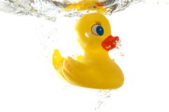 Rubber duck. In bath bathroom splashing in water royalty free stock photos