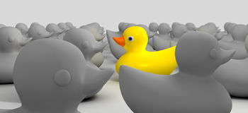 Rubber Duck Against The Flow. A non-conformist depiction of a yellow rubber bath duck swimming against the flow of a sea of grey rubber ducks Stock Image