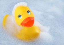 Rubber duck in the bath Stock Photos