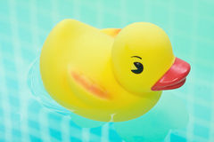Rubber duck in bath bathroom Stock Images