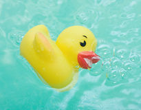 Rubber duck in bath bathroom Royalty Free Stock Images