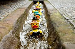 Rubber Duck, Bath Duck, Toys Royalty Free Stock Photo