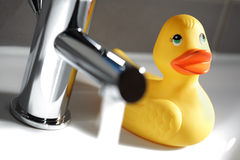 Rubber duck in the bathroom Stock Photos