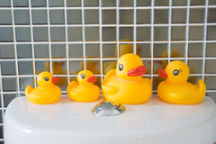 Rubber duck in bathroom Stock Photography
