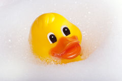 Rubber duck on the bathtub Royalty Free Stock Photos