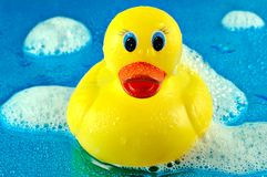 Rubber Duck in Bubbles. Toy rubber duck swimming in soap bubbles on a shiny watery blue background Royalty Free Stock Photography