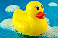 Rubber Duck in Bubbles. Toy rubber duck swimming in soap bubbles on a shiny watery blue background Royalty Free Stock Photos
