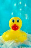 Rubber Duck in Bubbles. Toy rubber duck swimming in soap bubbles on a shiny watery blue background Stock Images