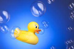 Rubber Duck with Bubbles Royalty Free Stock Photos