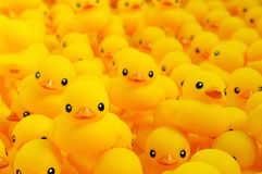 Rubber duck. Close up of yellow rubber duck Stock Photos