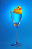 Rubber duck cocktail. Yellow rubber duck floating in tall cocktail flute glass, blue background Royalty Free Stock Photos