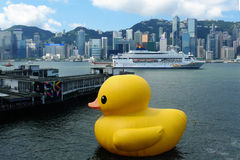 Rubber Duck and Cruise ship. Florentijn Hofmans giant rubber duck floats at Ocean Terminal at Tsim Sha Tsui, Victoria Harbour, Hong Kong Royalty Free Stock Photography