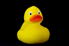 Rubber duck diagonally Stock Image