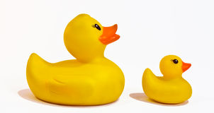 Rubber duck and duckling Stock Photography