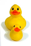 Rubber duck and duckling Royalty Free Stock Photography