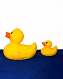 Rubber duck and duckling Stock Images