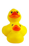 Plastic duck and duckling Stock Photos