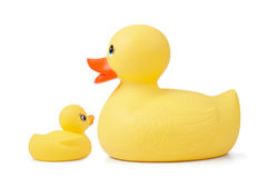 Rubber Duck With Duckling Royalty Free Stock Photos