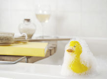 Rubber duck covered in soap suds Stock Images