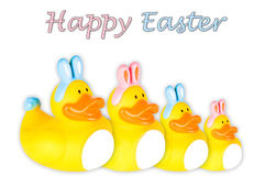 Rubber Duck Family dressed as Easter Bunnies Stock Photos
