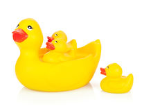 Rubber duck family. Isolated on white background royalty free stock images