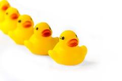 Rubber Duck Family Stock Photos