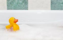 Rubber duck in foam bath Stock Photos