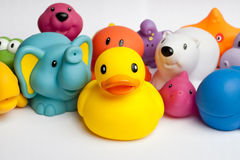 Rubber duck and friends Royalty Free Stock Photography