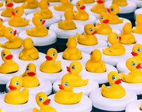 Rubber Duck Game Royalty Free Stock Photography