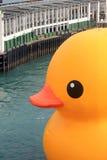 Rubber duck in hong kong Stock Photos