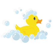 Rubber duck vector. Illustration of a yellow rubber duck in soap bubbles isolated on white background + vector eps file vector illustration