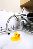 Rubber duck in kitchen sink Stock Image