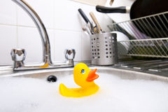 Rubber duck in kitchen sink Royalty Free Stock Photo
