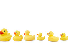 Rubber Duck Line Stock Photography