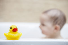 Rubber duck over the bathtube. 9 months baby boy having fun in the bathtub royalty free stock image