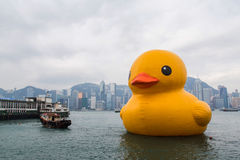 Rubber Duck Project Hong Kong Arkivfoto