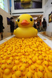 Rubber Duck Project in Hong Kong Stock Images