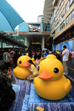 Rubber Duck Project i Hong Kong Arkivbild