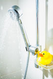 Rubber duck at shower with floating water Stock Images