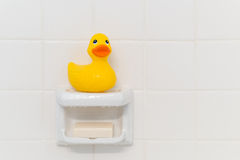 Rubber Duck in Shower Stock Images