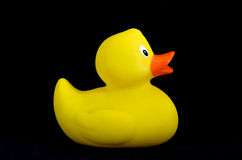 Rubber duck side Stock Photos