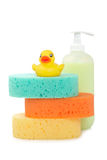 Rubber duck, soap and sponges Stock Photo