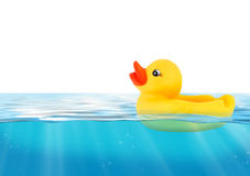 Rubber duck swimming in blue water Stock Photography