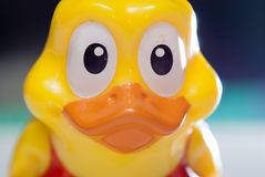 Rubber duck toy. Pretty face close-up of a rubber duck toy Stock Image