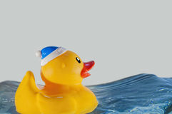 Rubber duck on water,waves,splash Stock Image