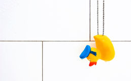 Rubber Duck in Wet White Shower Stall. Yellow ducky on chain hangs against white subway tiles Royalty Free Stock Photography