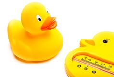 Rubber duck studio quality light. Rubber duck white background studio quality light Stock Photo