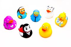 Rubber duck studio quality light. Rubber duck white background studio quality light Stock Photography